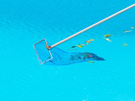 Mantenimiento de piscinas en madrid cuidado de piscinas for Mantenimiento de piscinas madrid